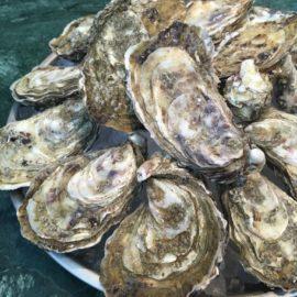 Les huîtres de Joël Delpuch, Perles de l'Impératrice - Eugène Eugène